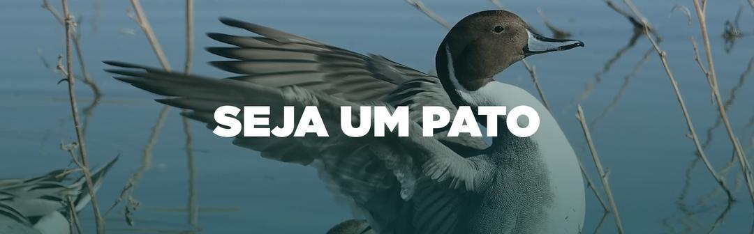 Seja um Pato